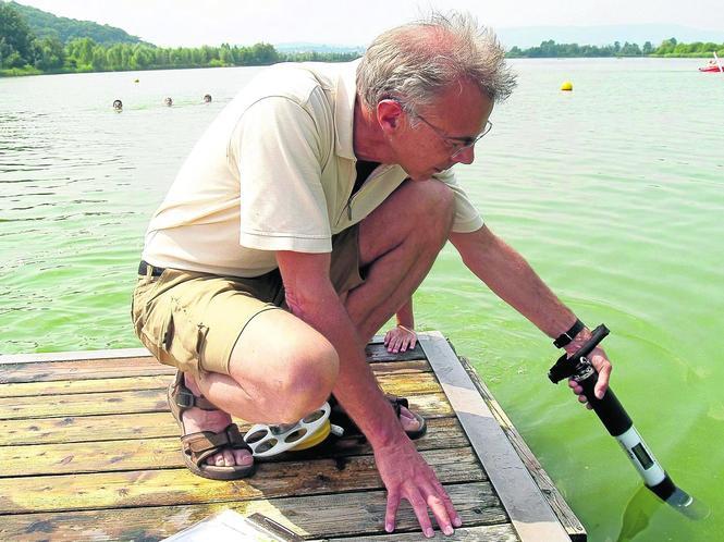 Eschwege blaualgen meinhardsee ist gesperrt eschwege for Blaualgen im garten