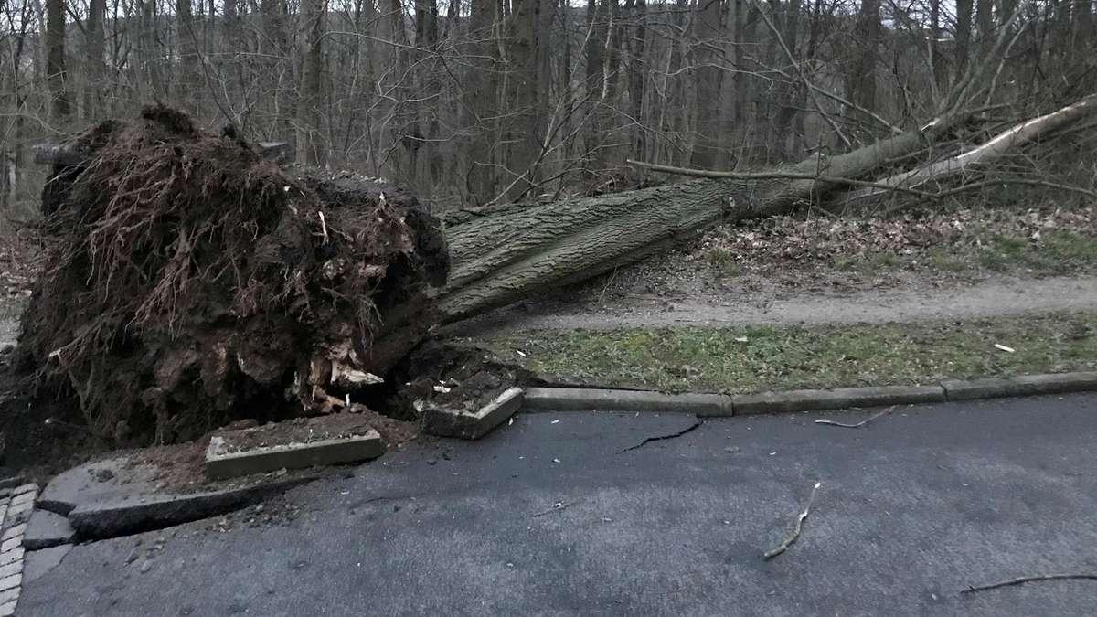 Sturm In Hessen